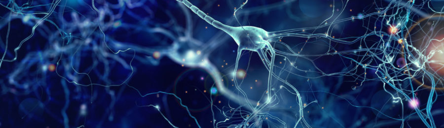 neuron-featured-image